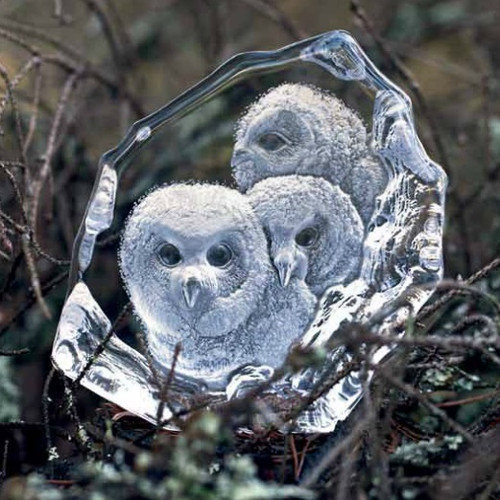 Owlets Crystal Sculpture | 33537
