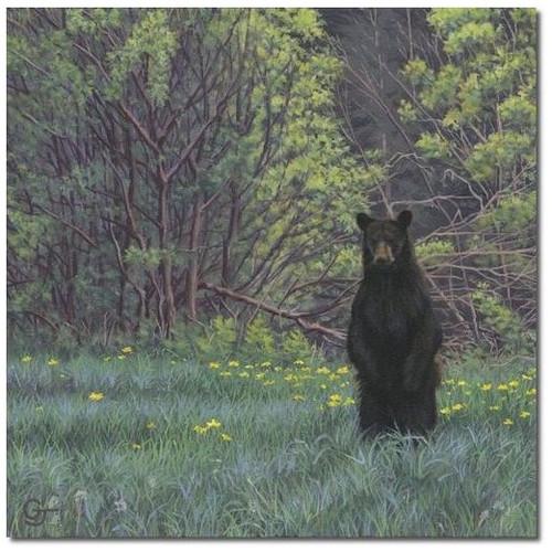 "Bear Print ""Picnic Patrol"""