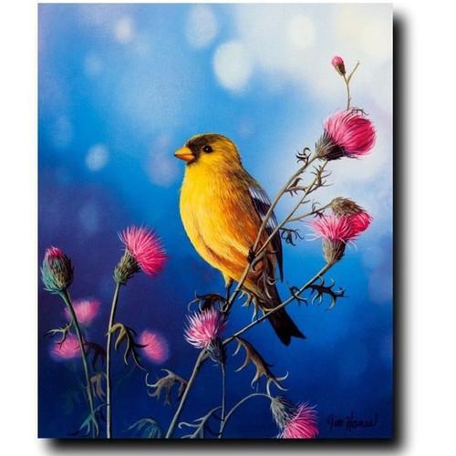 "Bird Print ""American Goldfinch"""