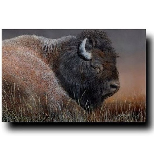 "Buffalo Print ""American Bison"""