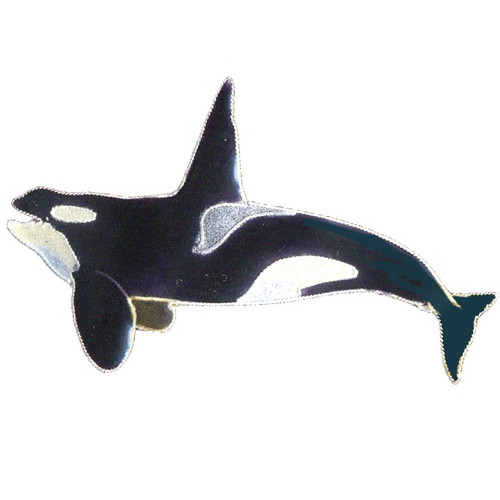 Orca Enamel Pin | Nature Jewelry
