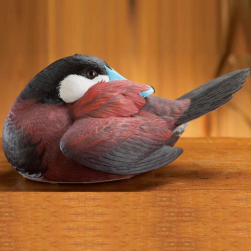 Preening Ruddy Duck Sculpture