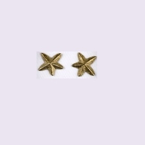 Starfish 14K Gold Post Earrings | Nature Jewelry