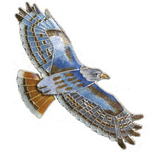 Red Tailed Hawk Cloisonne Pin | Bamboo Jewelry