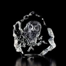 Owl Baby Crystal Sculpture | 33608 | Mats Jonasson Maleras