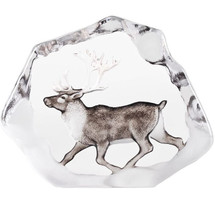 Reindeer Wildlife Crystal