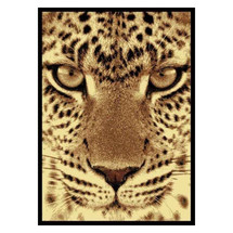 Leopard Face Area Rug | United Weavers