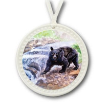 Bear Fishing Ornament | BDI180BH15