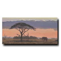 African Sunset Print | Gary Johnson
