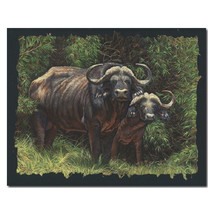 """Cape Buffalo Print """"Guardians of the Forest"""" 