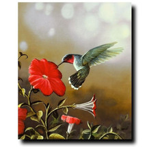Ruby Throated Hummingbird Print | Jim Hansel
