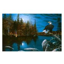 "Eagle Print ""Reflections"" | Jim Hansel | JHreflections"