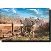 "Deer Print ""Back Forty Buck"" 