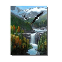 "Eagle Print ""Freedom Falls"" | Kevin Daniel"