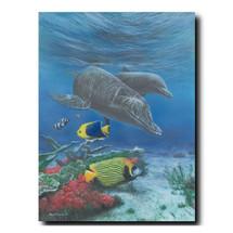 Dolphin Print | Kevin Daniel | KD432