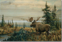 "Moose Wood Wall Art ""Showdown"" | Wood Graphixs | WGISHD2416"