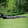 Large Alligator Bronze Fountain Statue | Metropolitan Galleries | SRB702223