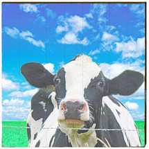 Surreal Cow Day Wood Wall Art 30x30 | Mill Wood Art | COW9-30x30