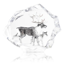 Reindeer Ltd Ed Crystal Sculpture | 34150 | Mats Jonasson Maleras