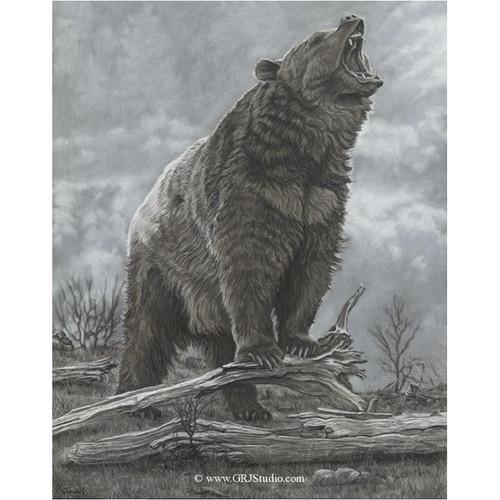 Bear Print   Last Stan...