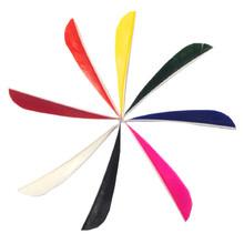 """Gateway 4""""Parabolic Feathers (Dozen)"""