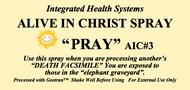 Alive in Christ PRAY Spray 8 oz