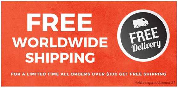 Free shipping for all orders over $100!