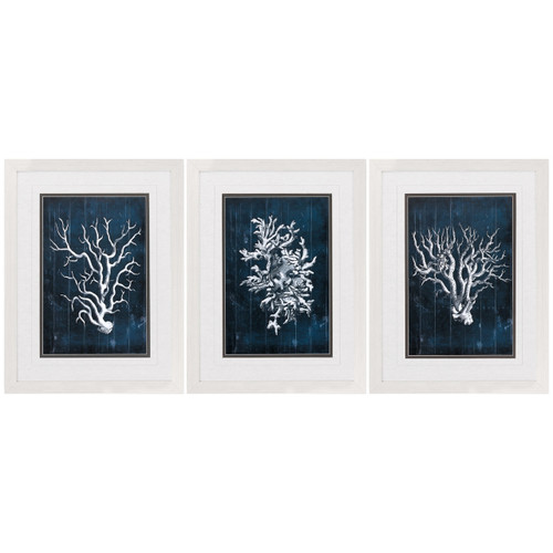 Blue Coral Framed Prints - Set of 3