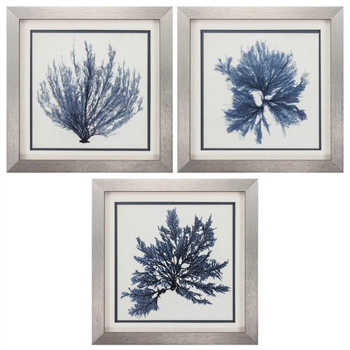 Coral Blue Seaweed Art - Set of 3