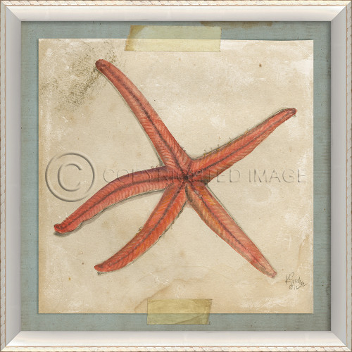 Starfish No. 5 Beach Art