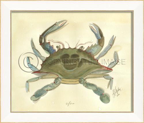 Spicher SS Crab No. 4