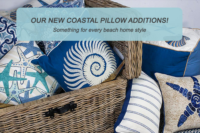 January Beach Pillow Toss