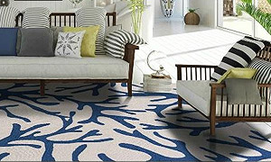 What could be better than a luxurious area rug for your coastal home? At  Caronu0027s Beach House, we have curated a large collection of coastal living,  ...
