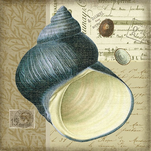 Indigo Shell And Vintage Postcards Art 2