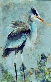 Great Blue Heron Art by Anthony Morrow