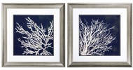 Coastal Coral Framed Prints - Set of 2