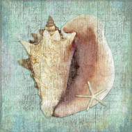Aqua Distressed Pink Conch Shell Art