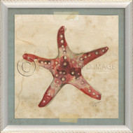 Starfish No. 2 Beach Art