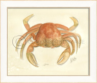 Spicher SS Crab No. 3