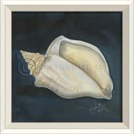 WC Seashell No. 4