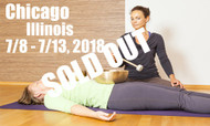 **SOLD OUT** VSA Singing Bowl Vibrational Sound Therapy Certification Course Chicago, Il July 8 - 13, 2018