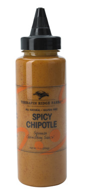 Spicy Chipotle Garnishing Squeeze Sauce