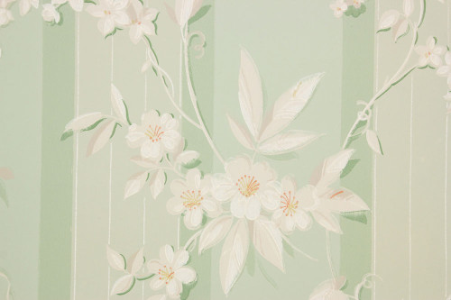 1940s Vintage Wallpaper Morning Glories on Green