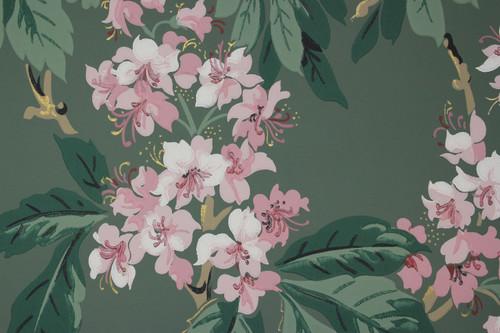 1950s Vintage Wallpaper Pink Floral on Green