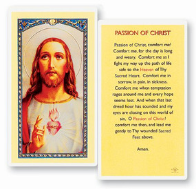 Passion of Christ Laminated Holy Card