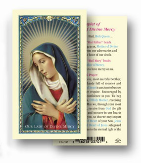 Our Lady of Divine Mercy Laminated Holy Card