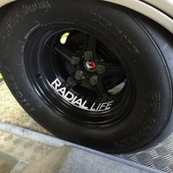 RADIAL LIFE Sticker 30CM White