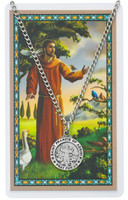 (PSD600FR) ST FRANCIS PRAYER CARD SET