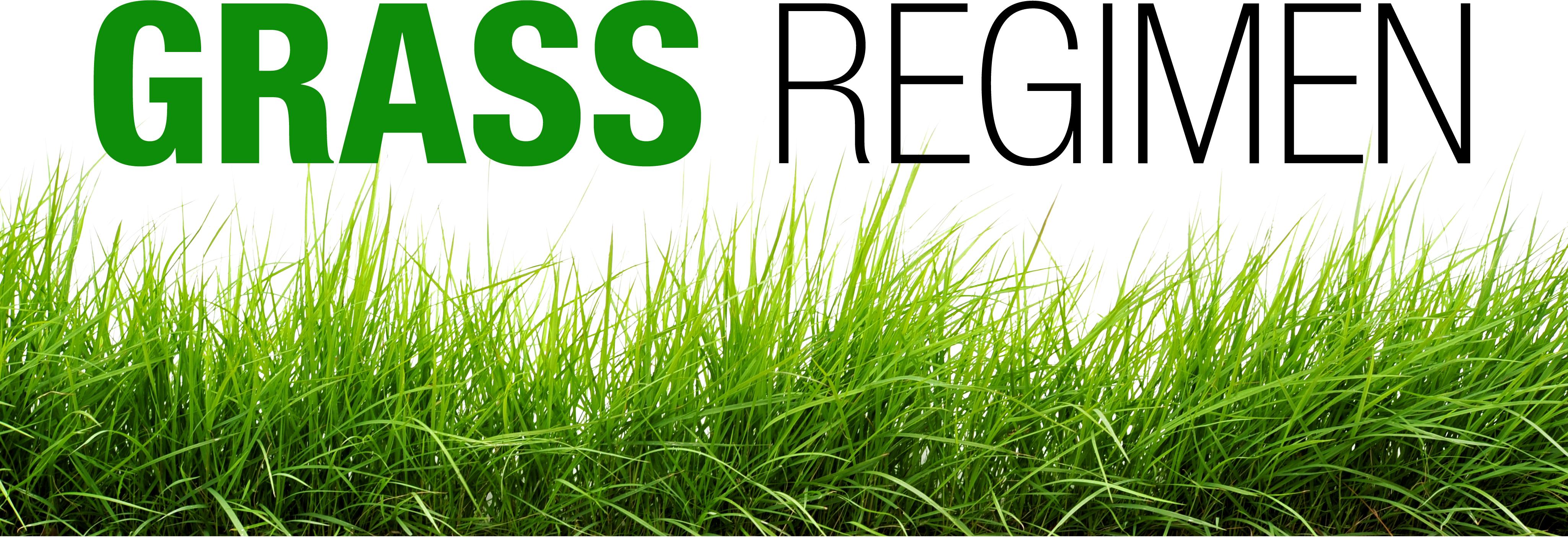 grassheader.jpg