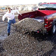 Loadhandler Full Size Heavy Duty Truck Unloader 3000